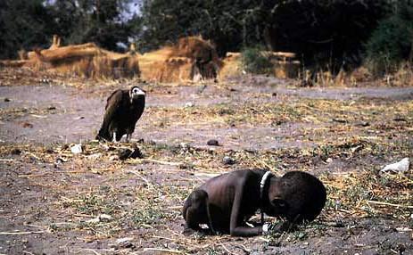 等着吃小女孩的秃鹰 080214